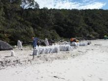 People cleaning up an oiled beach with bags full of oiled sand