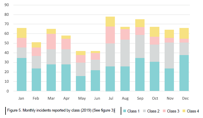 Figure 5. Monthly incidents reported by class (2019) (See figure 3)
