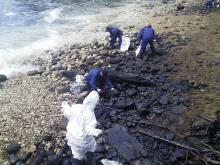 Image of beach clean-up crew at Flying Fish Cove