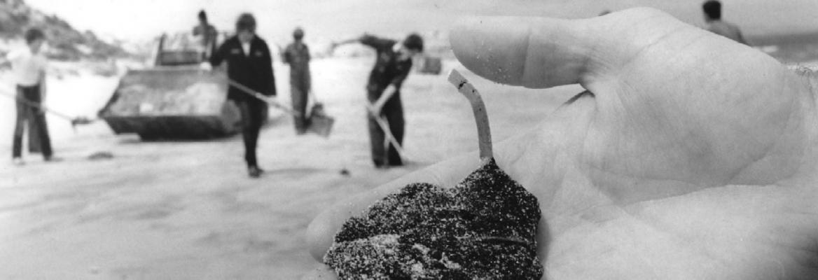 Image showing the oil spill cleanup