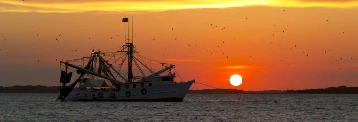 Fishing boat on the ocean in front of sunset