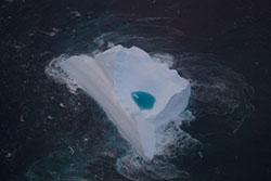 Image of debris found floating in the search area
