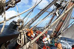 Image on board HMB Endeavour