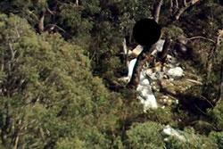 Image of aircraft crash - Jabiru ST3 55-3692, Katoomba, NSW