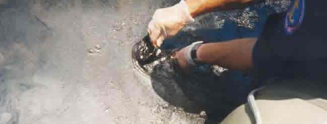 Image of an official getting samples of oil from an oil slick
